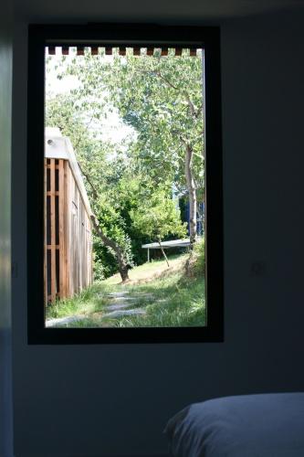 Nichée dans les bois : 5-IMG_9962b